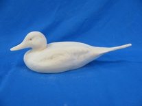 Pintail 16In
